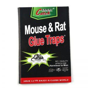 מלכודת ספר עכברושים