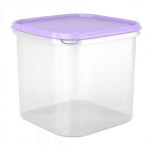 קופסא למזון איכותית - תמה 4.2 ליטר